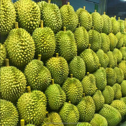 Thailand Premium Fresh Monthong King Durian For Sale