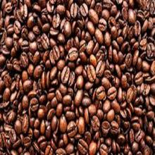 best quality Robusta and Arabica coffee beans for sale