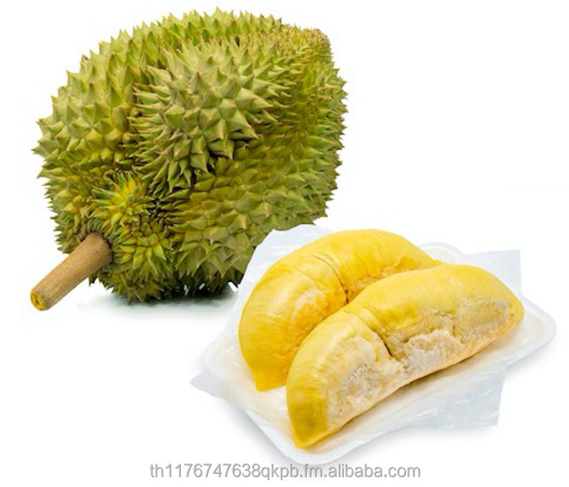 Whole Durian Monthong from Thai Farmer grow in Chantha-Buri and the Southern of Thailand