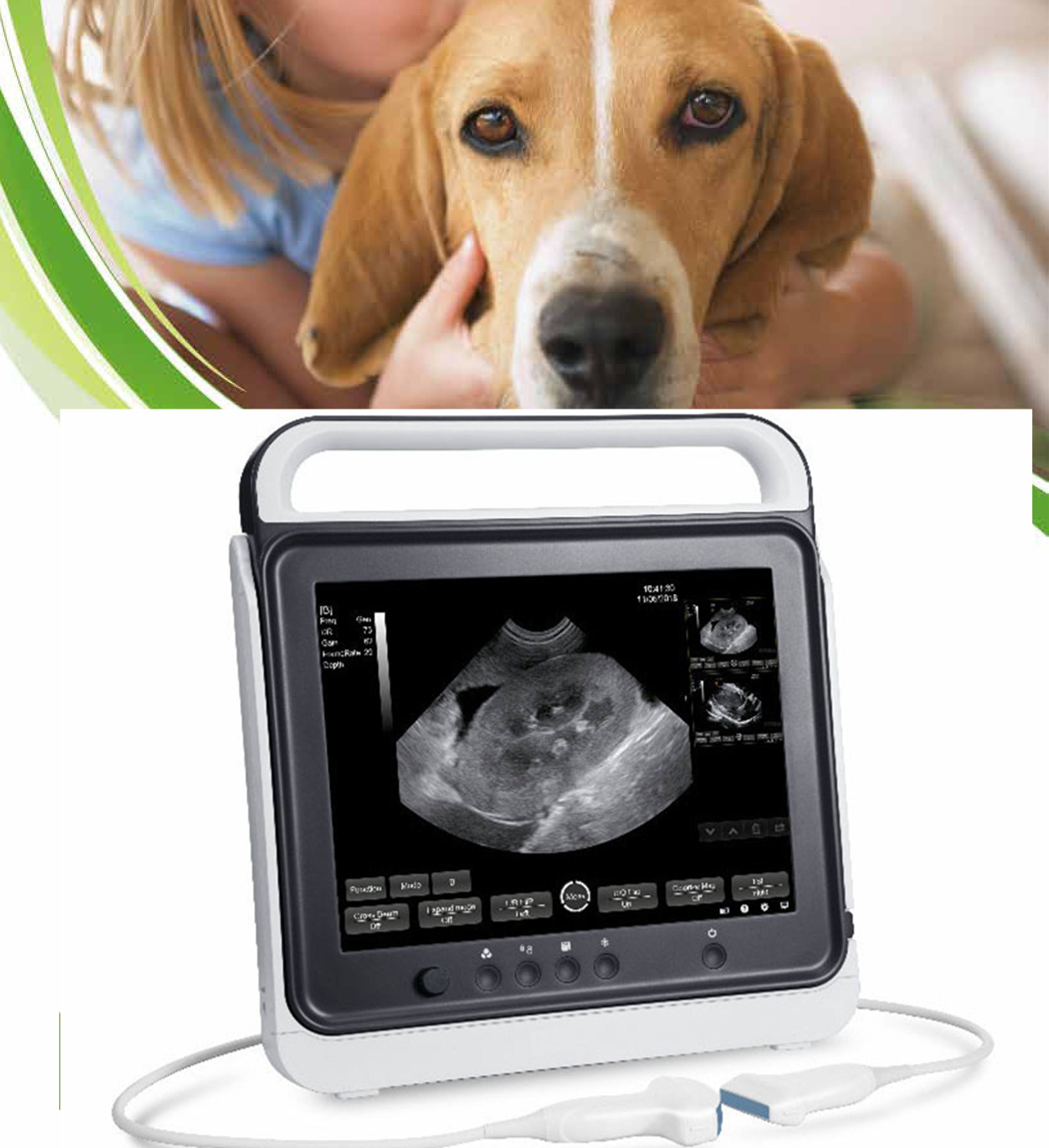 Veterinary ultrasound machine / portable handheld ultrasound scanner for animal