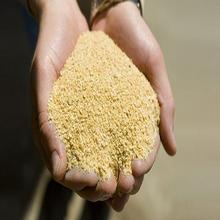 Soybean Meal for Animal Feed Good Quality