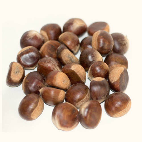 New crop chestnut price/Chestnut from China/Wholesale chestnut