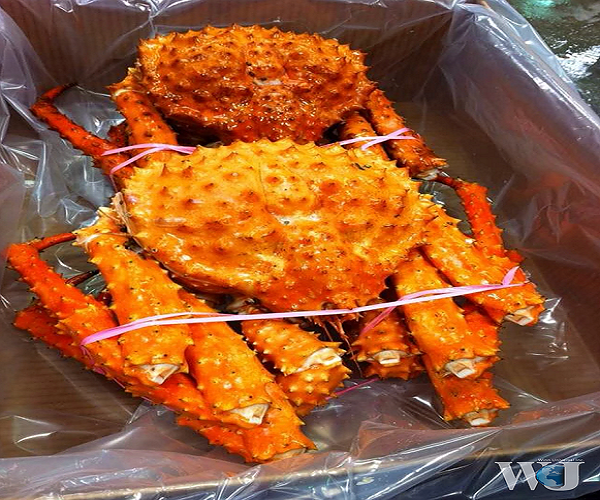 Red King Crabs