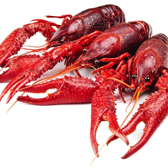 Delicious Good Taste Crawfish Live Pre-cooked Cleaned Crawfish (Procambarus clarkii)