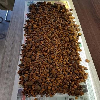 Natural ox gallstones/cow gallstones for sale