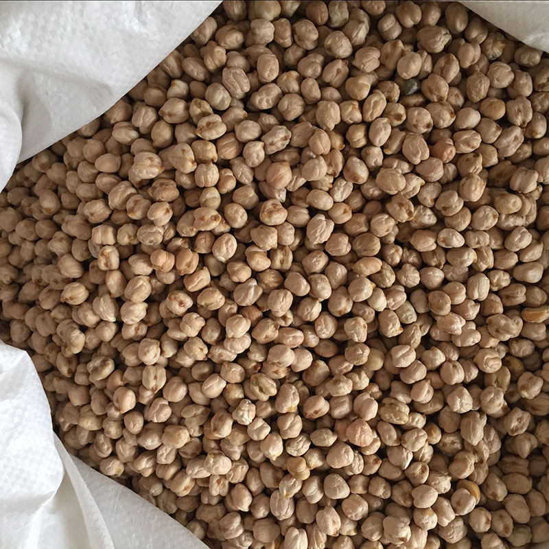 Wholesale Kabuli Desi thailand chickpeas with competitive price