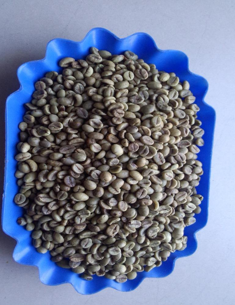 VIETNAM ROBUSTA GREEN COFFEE BEANS SCR #18