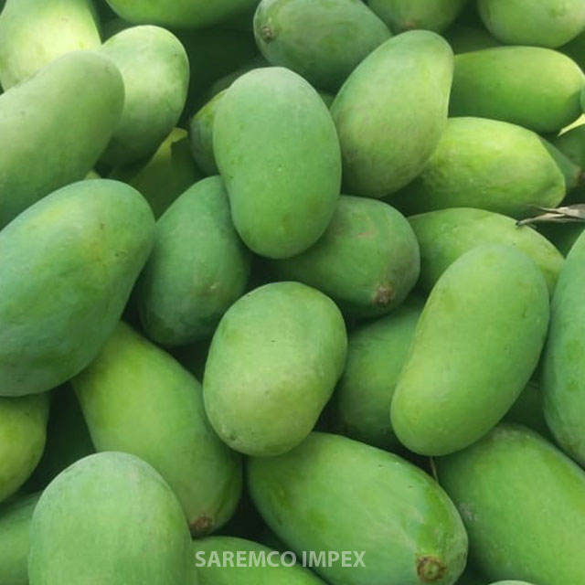 "Premium Quality Green Mangoes From Pakistan ""Sindhri Mangoes"""