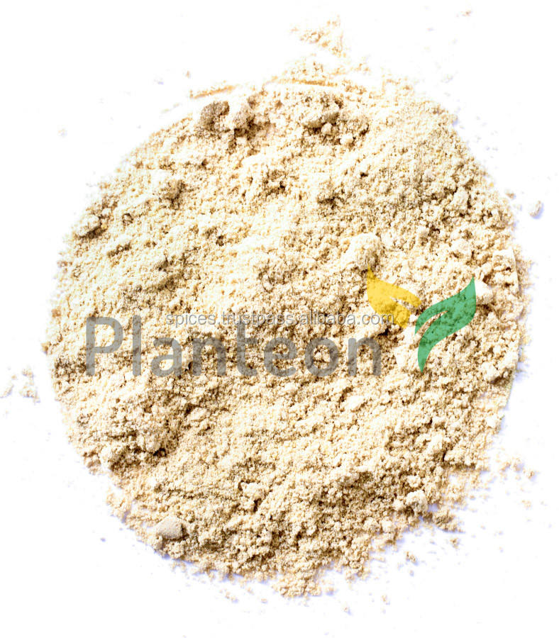 GInger powder - Zingiber officinale