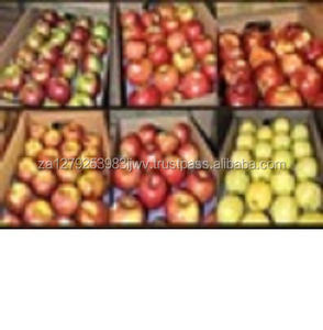 Red Delicious Apple, Royal Gala Apple, Granny Smith Apple Herfst Goud Apple