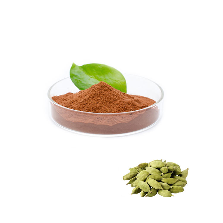Supply 100% Pure Cardamom Extract Powder