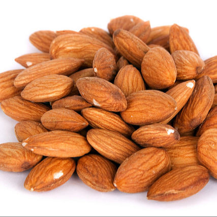 Bulk & Wholesale Almond Nuts / Raw Natural Almond Nuts / Organic Bitter Almonds