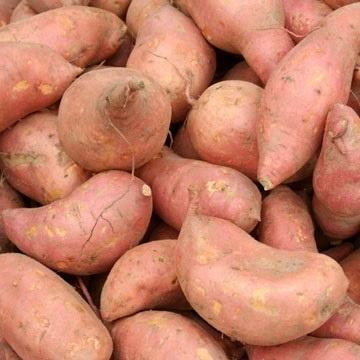 Sweet potatoes ,Fresh Sweet Potatoes dark purple skin