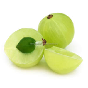 Amla Essential Oil | 100% Natural and Pure Amla Oil | Indian Gooseberry Oil