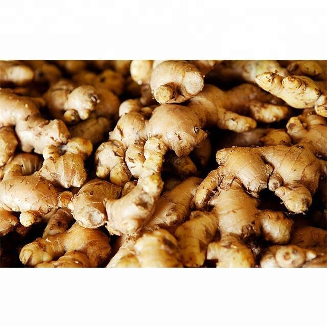 Wholesale Fresh Ginger / Price Of Fresh Ginger / Fresh Ginger in India