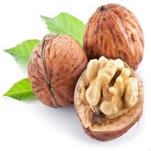 Certified USA walnuts in shell and walnut kernel