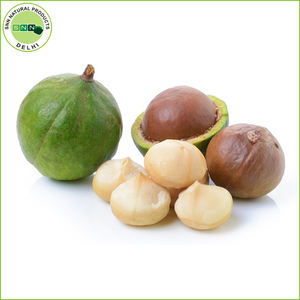Organic Wholesale Bulk Tamanu Oil
