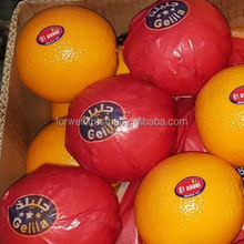 Fresh Valancia orange with best quality , Class A for Export