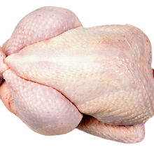 Frozen Chicken Paws Halal Frozen Chicken Breast Whole Chicken