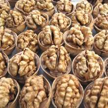 Good Dried Walnuts in Shell/Walnuts Kernels