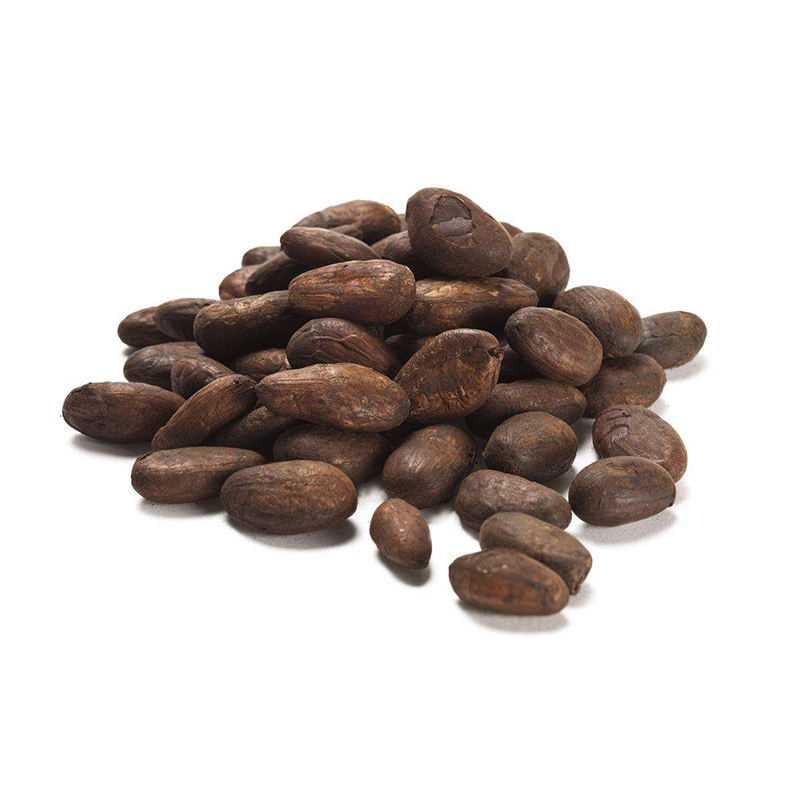 Quality Fresh Cocoa Beans From Peru Wholesale