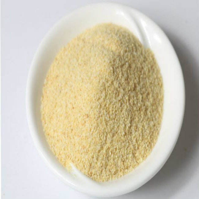 Dehydrated Garlic Granules with Best Price