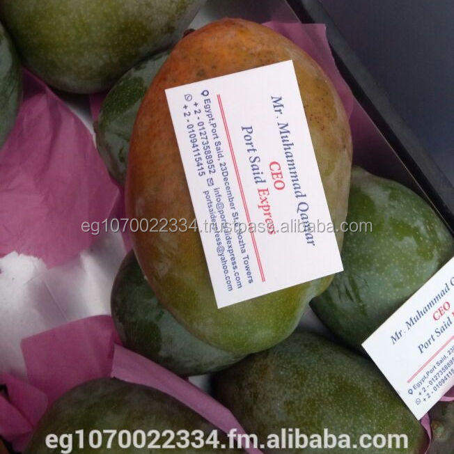 EGYPT FRESH MANGO , export fresh fruits from egypt