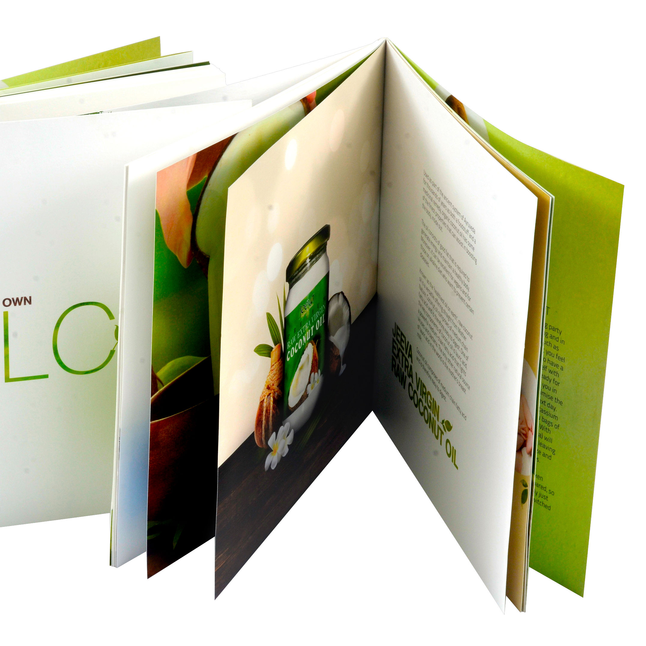 Folder / Flyer / Booklet / Best Quality Cheap Brochure Printing