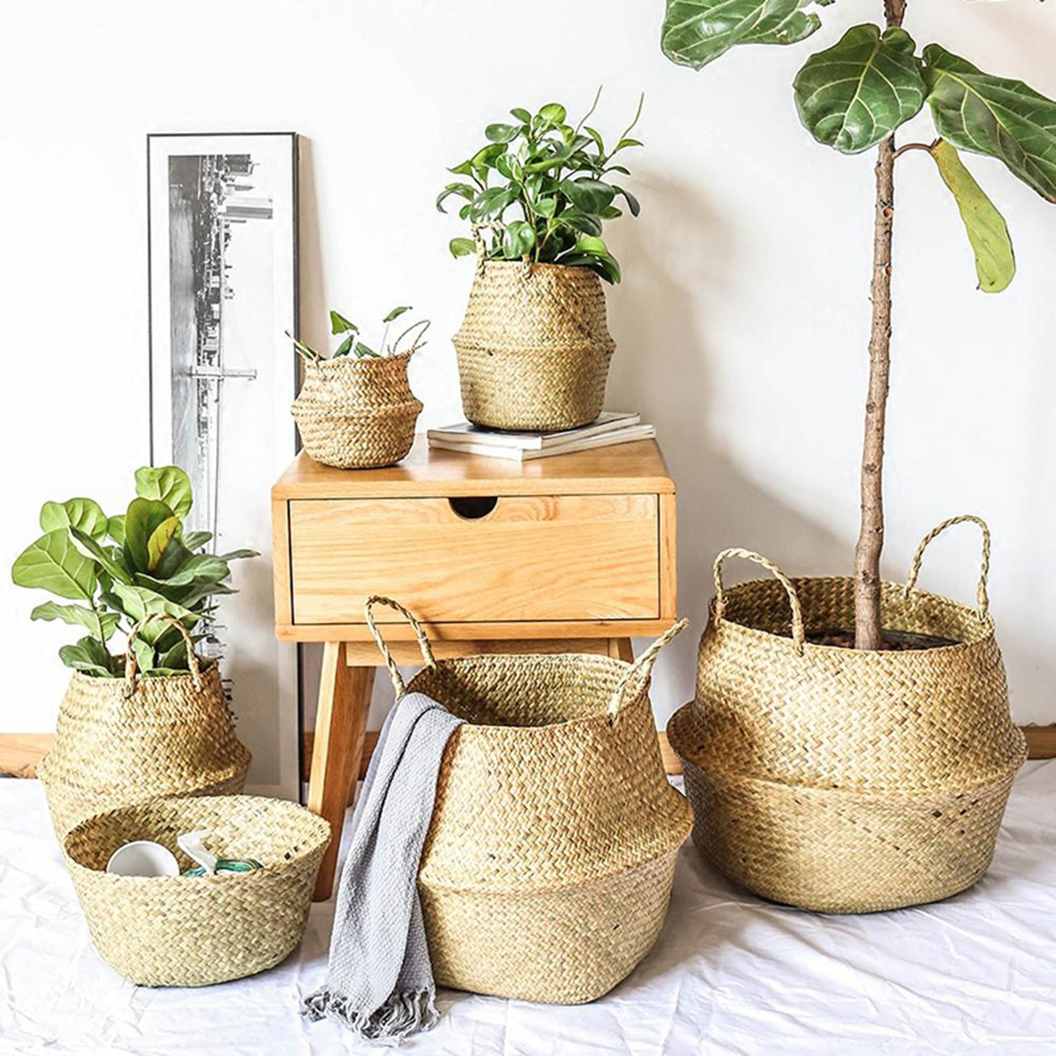 High quality best selling seagrass belly baskets with handle made in Viet Nam