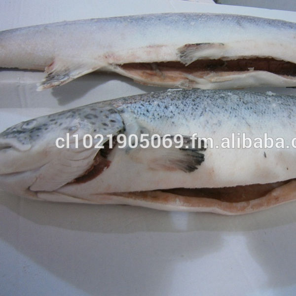 Chilean Salmon offer END OF YEAR