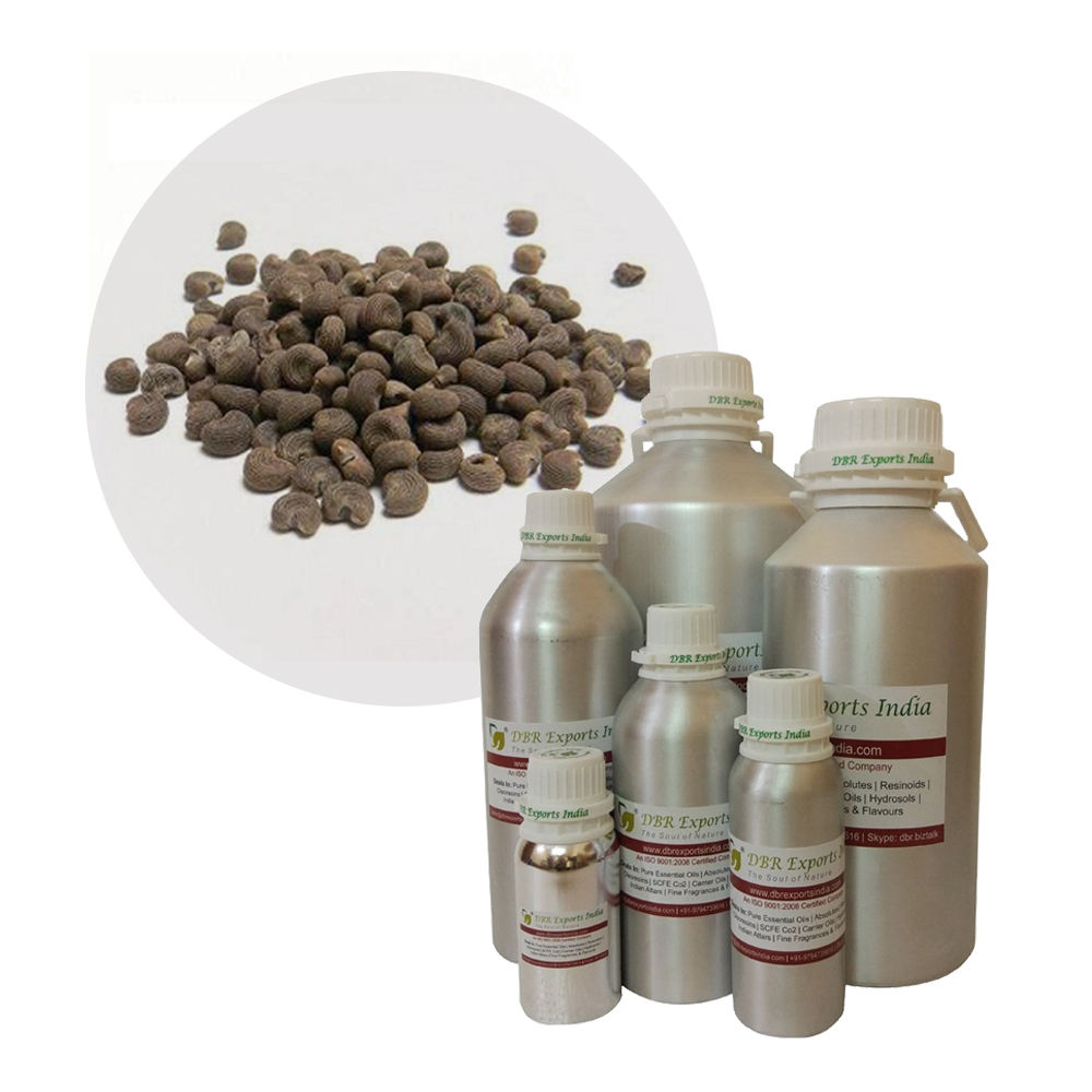 Indian Supplier Ambrette Seed Essential Oil
