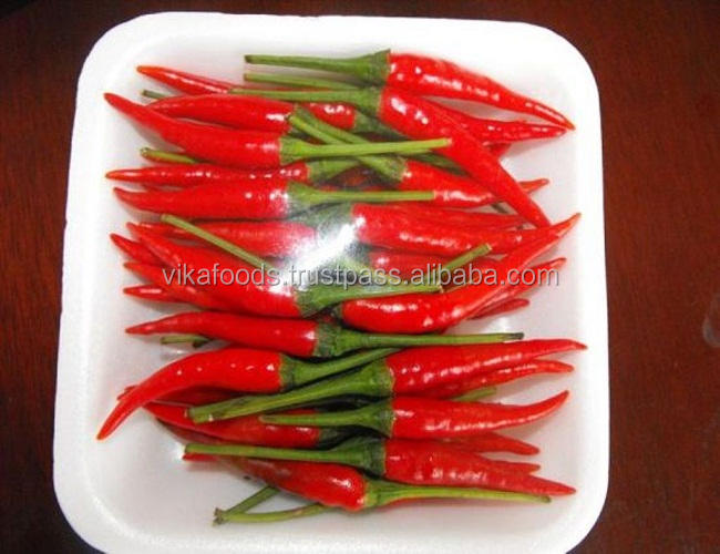 RED/GREEN FRESH CHILLI HOT SPICY EXPORT STANDARD PRICE FOR SALE HIGH QUALITY WITH BEST PRICE FOR YOU