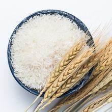 5% 10% broken Vietnam Jasmine Rice / Long grain white rice Specification