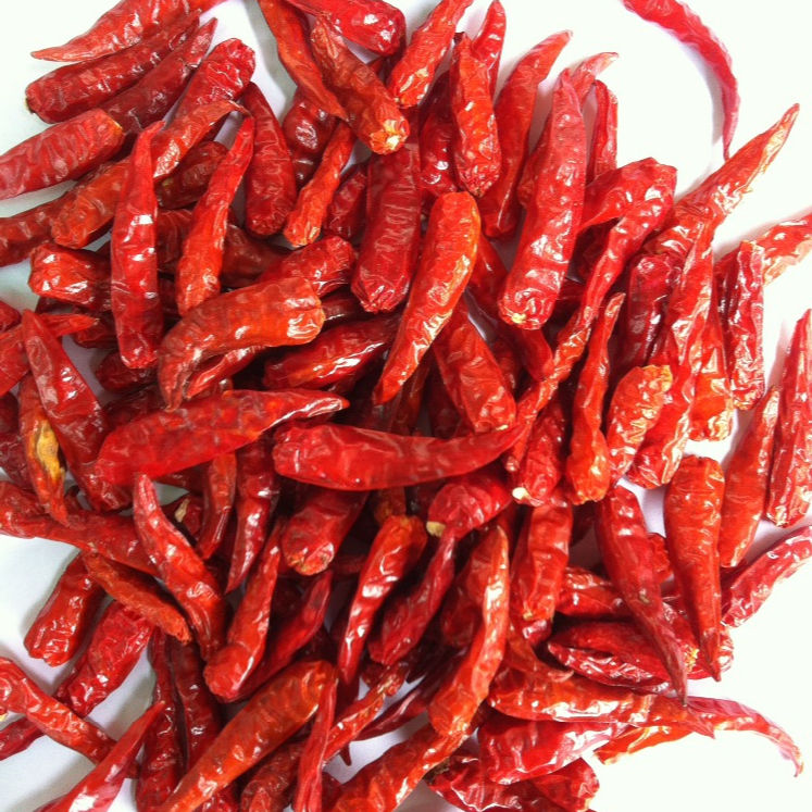 Good quality Dried Red Chilli from Vietnam