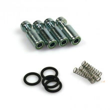 Bigas repair kit 4 cylinder rail