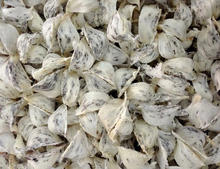Bird Nest Export Standard Price For Sale High Quality With Best Price For You