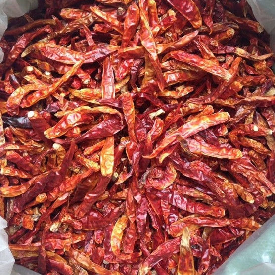 DRIED CHILI/RED CHILI WHOLE DRIED VIETNAM SPICES 2020/Whatsapp: +84 845 639 639