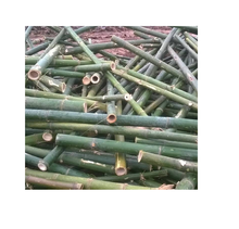 Cheapest bamboo poles/ Bamboo Tubes for flute making (Whatsapp: +84 845639639  - Ms Holiday )