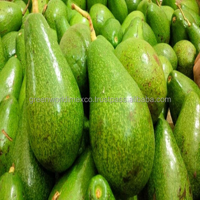 BEST QUALITY OF FRESH AND FROZEN AVOCADO SALE FOR NOW !
