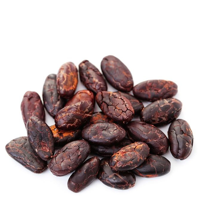 Cacao Beans ,Dried Criollo Cocoa Beans ,Organic Roasted Cacao Beans