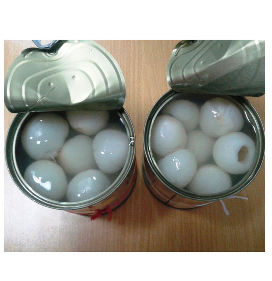 Canned lychee fruit in syrup 565gr
