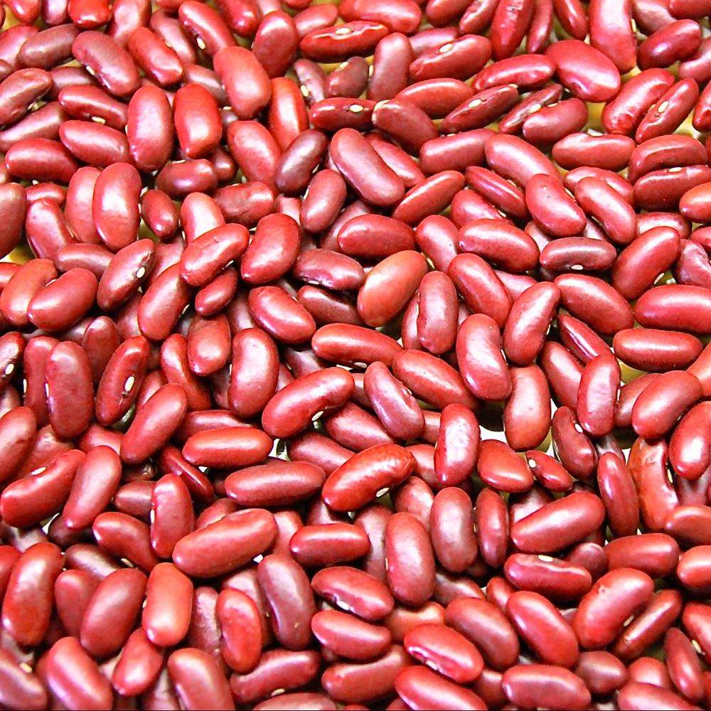 Kidney Red and White Beans/ Black Beans