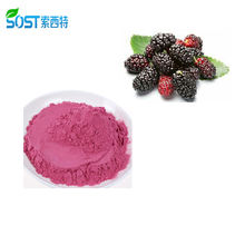 SOST Premium Suppliers Wholesale Organic MulBerry Fruit Extract Powder