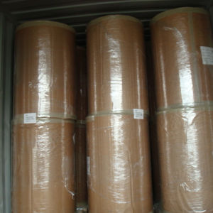 Fabriek direct leveren thermische jumbo rolls 50gsm, 55gsm, 60gsm, 65gsm