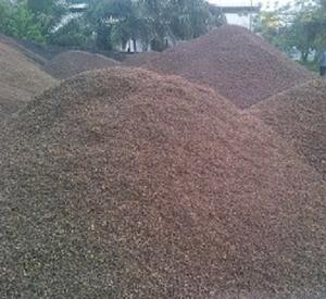 Cheap Price Palm Kernel Shell(PKS)/Coconut Shell/Palm Kernel Shell Charcoal