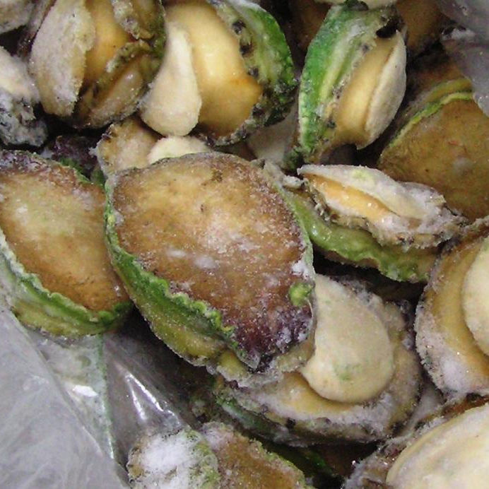 Frozen Abalone for sale