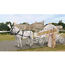 Love Marriage Cinderella Carriage White Cinderella Horse Carriage for Wedding Royal Cinderella Horse Buggy Manufacturer