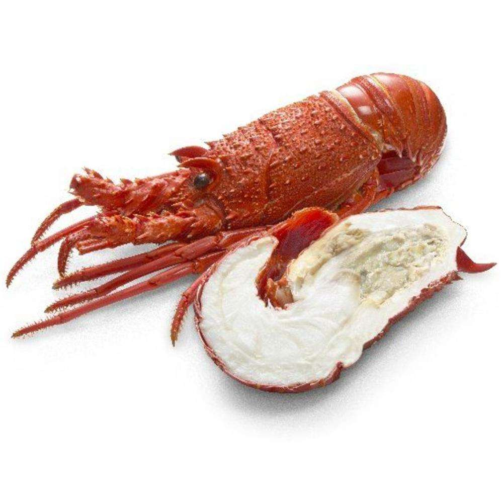 Hot sale live Canadian frozen whole round lobster