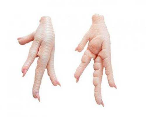 Halal Clean Grade AA Processed Chicken Feet / Processed Frozen Chicken Paws Brazil