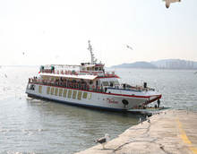 348PAX CRUISE/SIGHTSEEING SHIP FOR SALE(SDM-PS-167)